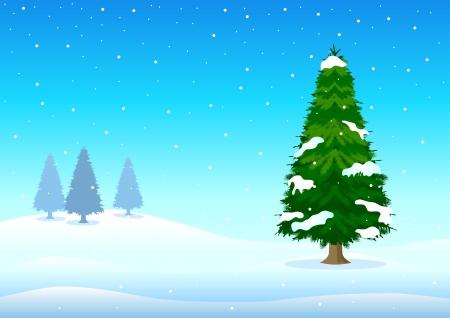 wintertime: illustration of pine tree in wintertime