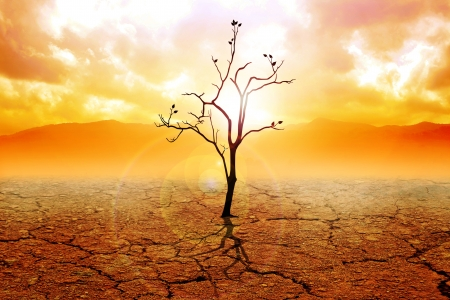 barren: Illustration of a dried tree on dry land Stock Photo
