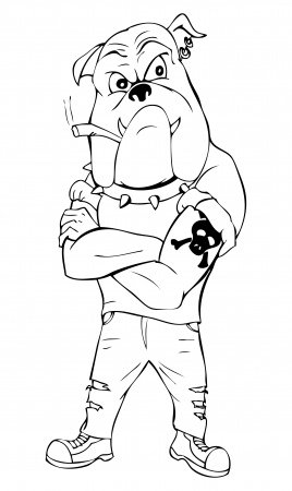 Outline illustration of a bulldog as a thug