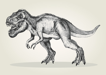 tiranosaurio rex: Ilustración Boceto de un tiranosaurio rex Vectores