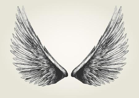 Sketch illustration of wings Illustration