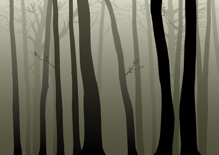 fog forest: Vector illustration of woods Illustration