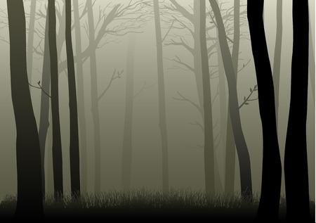 Vector illustratie van de mistige bossen