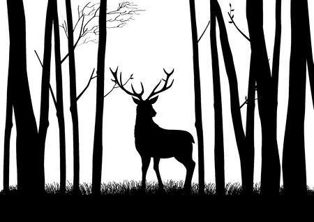 Silhouette of a reindeer in the woods