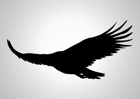 Silhouette illustration of a soaring eagle Illustration