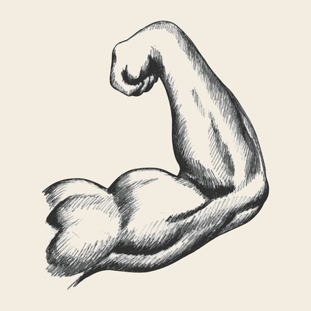 strong arm: Sketch illustration of muscular human male right arm from back view Illustration
