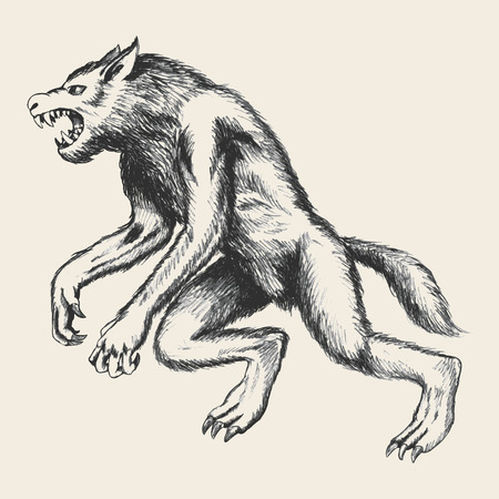 cursed: Sketch illustration of werewolf