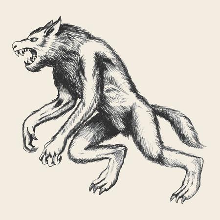 wilkołak: Szkic ilustracji wilkołaka Ilustracja