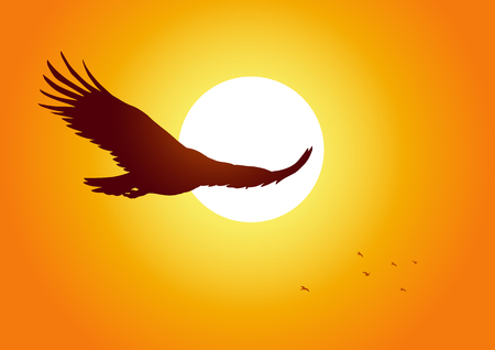 flying eagle: Silhouette illustration of an eagle soaring on sunset