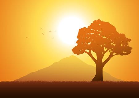 oak tree silhouette: Silhouette illustration of a tree
