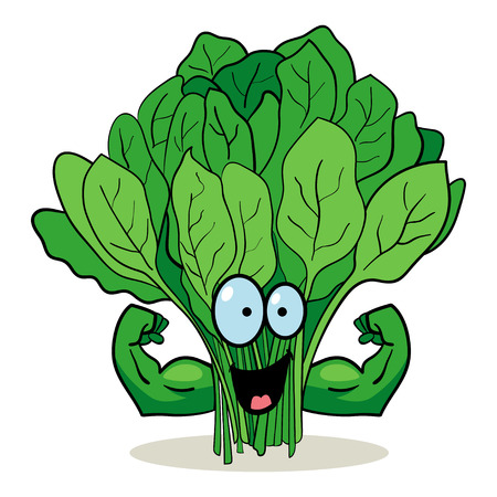 fresh spinach: Cartoon character of spinach with muscular hands Illustration