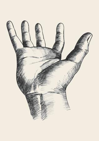 manos abiertas: Ilustración Boceto de un gesto de la mano