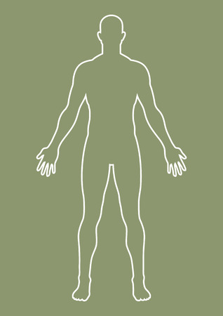 proportional: Simple graphic of a male body