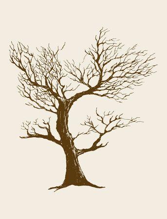 Skizze Illustration eines getrockneten Baum Illustration