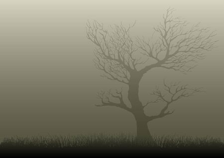 grass land: Illustration of a dried tree in misty night Illustration