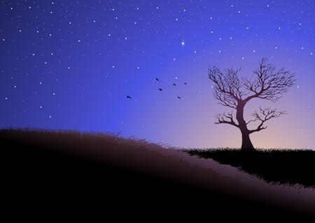 grassland: Illustration of grassland at dusk Illustration
