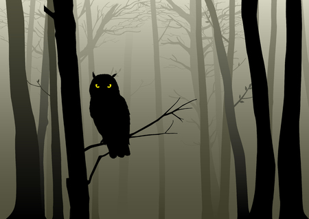 霧の深い森の中にフクロウのシルエット