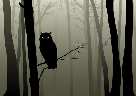 Silhouet van een uil in de mistige bossen Stock Illustratie