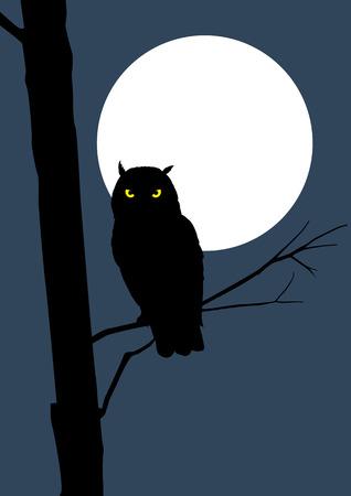 보름달에 올빼미의 실루엣 스톡 콘텐츠 - 46275844