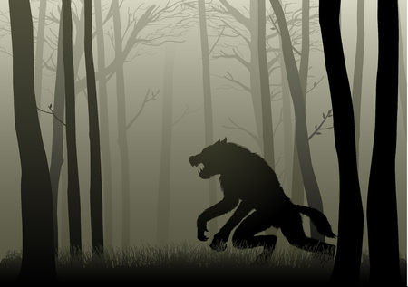 lurking: A Werewolf lurking in the dark woods Vectores