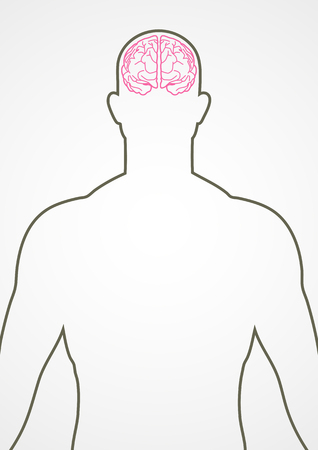 Line art of male internal organ, brain Stock Vector - 48615558