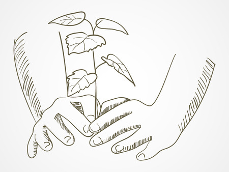 tree planting: Line art of hands planting the tree