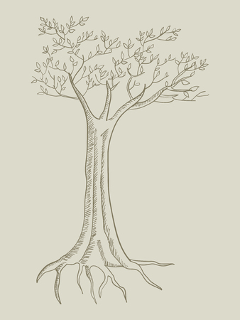 rooted: Line art illustration of a tree