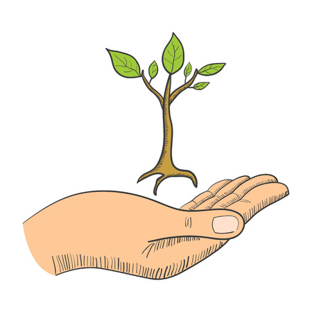 young tree: Simple graphic of a hand with a young tree symbol Illustration