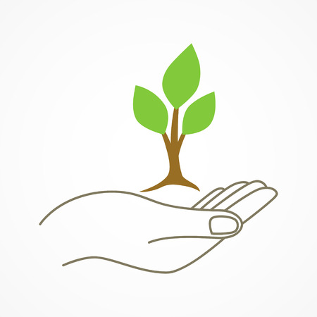 young tree: Simple graphic of a hand holding a young tree symbol