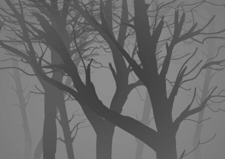fog forest: Silhouette illustration of a misty dark woods with dried trees
