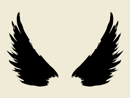Brush sketch of wings