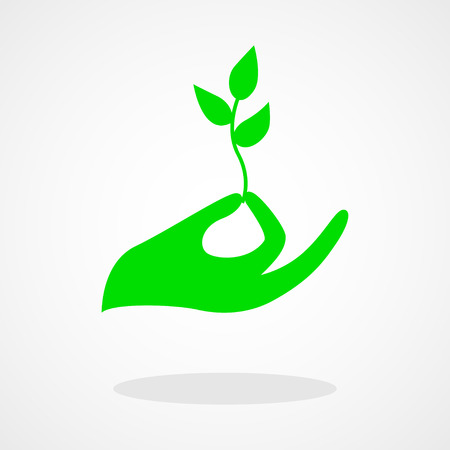 environmental concern: Icon of a hand holding a young plant or seed