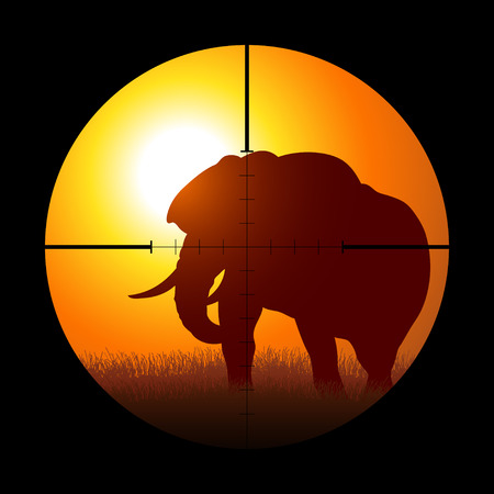 unlawful: Silhouette illustration of a hunter targeting an elephant