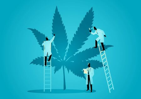 Vector graphic illustration of team of doctors or scientists checking hemp plants. Concept of cannabis as alternative medicine Ilustrace