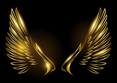 Vector illustration of golden wings on black background