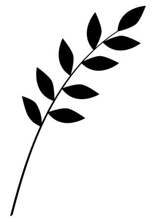 Monochrome vector illustration of branch and leaves, simple flat black and white illustration Illustration