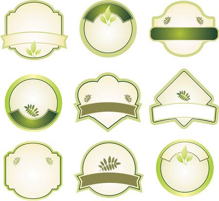 shield emblem: elementi di design