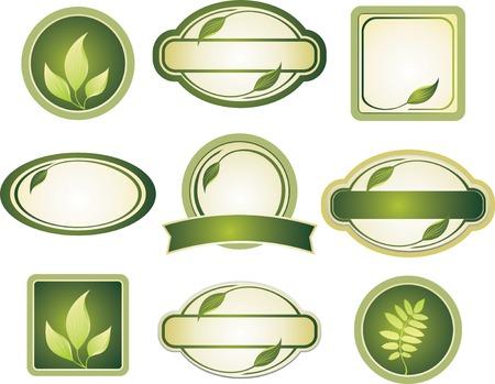 leaf curl: design elements Illustration