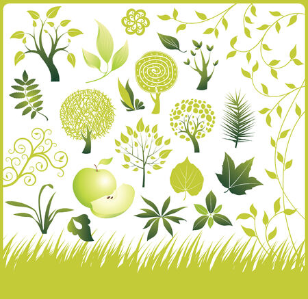 Set of design elements. Green collection. Tree and leaf.  Vector