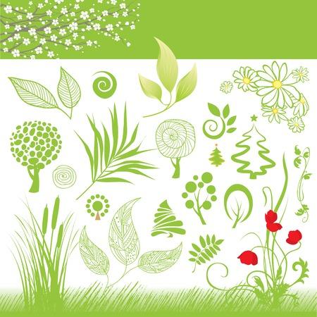 recolección de la hoja verde y el árbol de