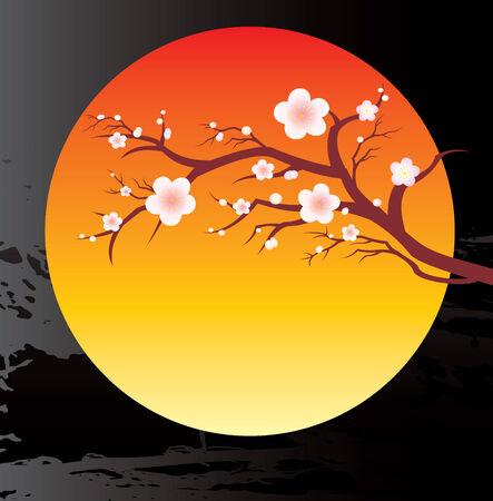 cherry twigs in bloom  Vector