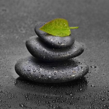 black stone with leaf Stock Photo - 6902003