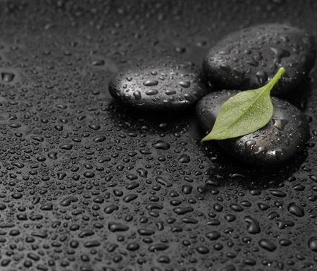 black stone with leaf photo
