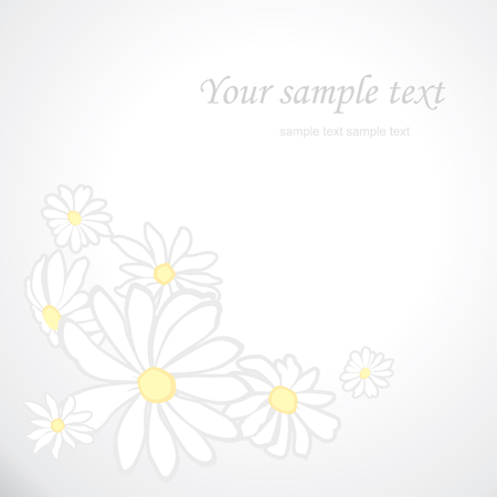 oxeye: soft background with flowers