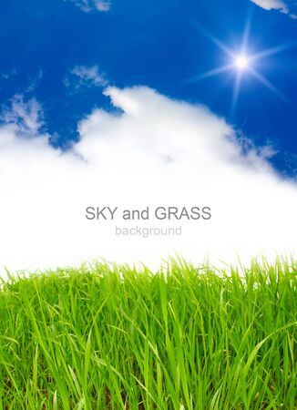sky and grass Stock Photo - 8348655