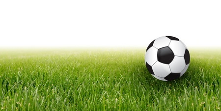 soccer fields: soccer football and green grass Stock Photo