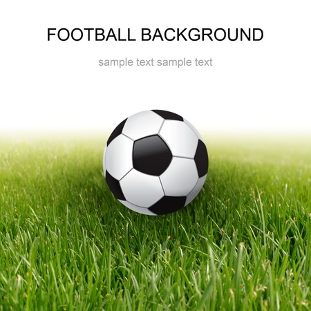 grassland: soccer ball and green grass Stock Photo