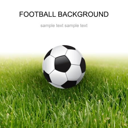 soccer fields: soccer ball and green grass Stock Photo