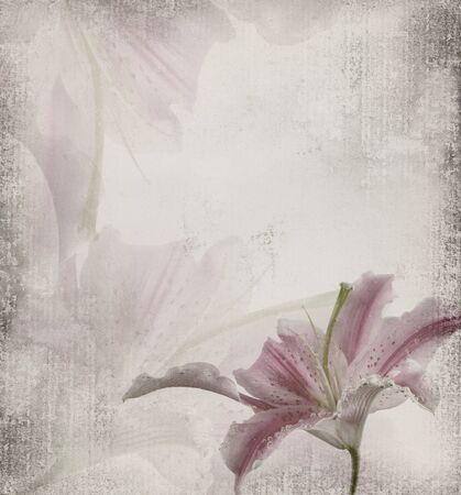 old texture with flower photo