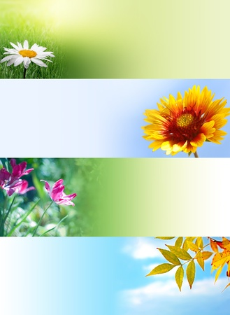 nature web banners photo